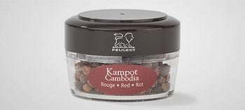 Recharge poivre rouge Kampot Zanzibar Peugeot